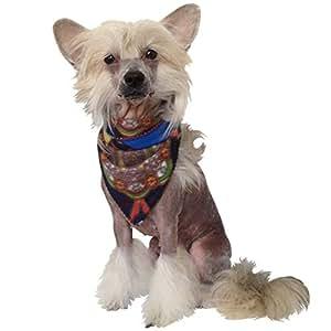 Stylisches Pañuelo–para el perro Geniales en invierno (Multicolor)
