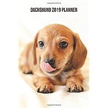 Dachshund Planner: 2019: Cute Dachshund Organizer and Notebook
