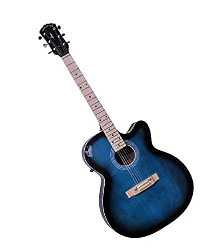 signature musicals nsmbt001 topaz guitar amazon in electronics