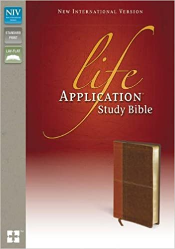 niv bible amazon