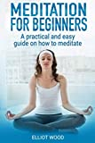 Meditation for beginners, a practical and easy guide on how to meditate: Focus meditation techniques