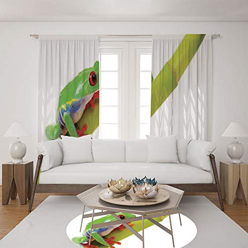 2 Panel Set Satin Window Drapes Living Room Curtains and Round Rug 35.4 inches,Frog Sitting on the Branch Native Animals,The perfect combination of curtains and Round Rug makes your living room warmer - Classic Accents Friendly Frogs