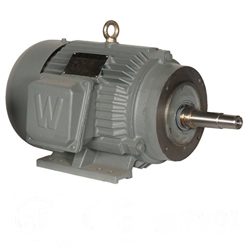 Phase Totally Enclosed Base Rigid (Worldwide Electric WWE10-36-215JM 215JM Frame Totally Enclosed Fan Cooled Close Coupled Pump Motor, Rigid Base, 3 Phase, 10 hp, 3600 RPM, 208-230/460V)