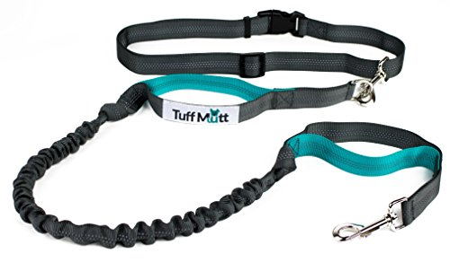 Tuff Mutt - Hands Free Dog Leash Running, Walking, Hiking, Durable Dual-Handle Bungee Leash, Reflective Stitching, 4-Foot Long, Adjustable Waist Belt (Fits up to 42 Waist) (Gray/Teal)