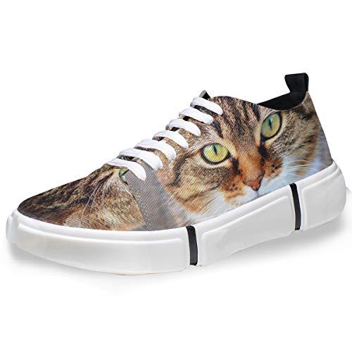 MONTOJ Men Shoes Cute Fat Cat Pattern Men's Casual Sneaker