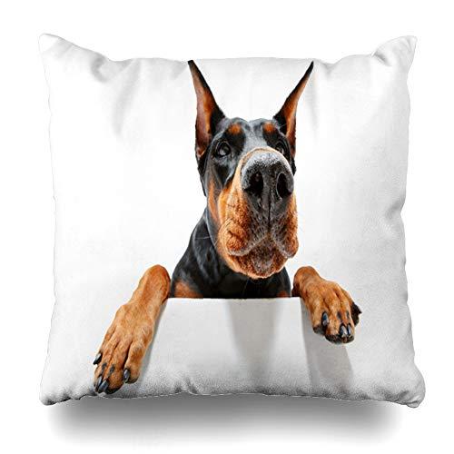 Ahawoso Throw Pillow Cover Pedigree Dog Go You Close Climbing Doberman Canine I to Pinscher On Wildlife Pincher Design Black Decor Zippered Cushion Case 20