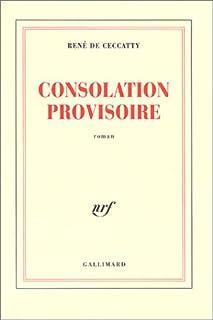 Consolation provisoire : roman