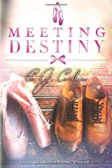 Meeting Destiny Paperback
