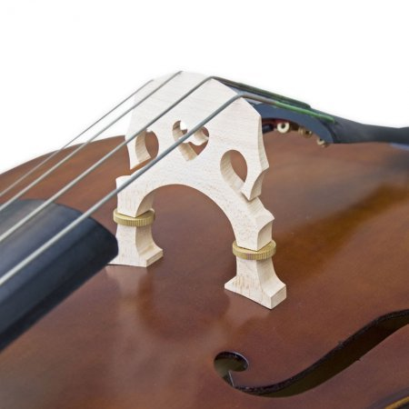 Upright Bass Bridge Detail