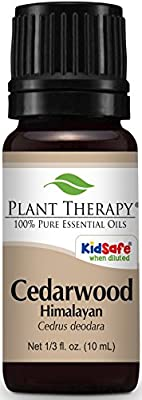 Plant Therapy Cedarwood Himalayan Essential Oil. 100% Pure, Undiluted, Therapeutic Grade.