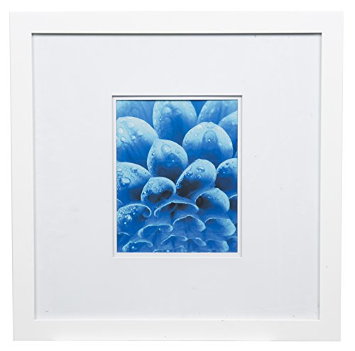 Gallery Solutions Flat Wall Picture Photo 18X18 White Double Frame, MATTED to 8X10, 18