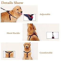 ARIKON Adjustable Dog Leash Harness Collar, L (above 50 lb)