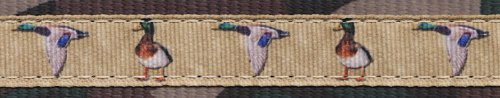 Country Brook Design 1 Inch Mallard Ribbon on Woodland Camo Webbing, 50 Yards by Country Brook Design