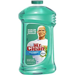 Mr. Clean 40 Ounce