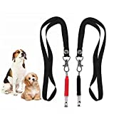 HiMo Dog Whistle Pet Training Whistle to Stop Barking, Adjustable Pitch Ultrasonic Training Tool Silent Bark Control for Dogs-with Lanyard Strap& Training Ebook Guide (Black_Red)