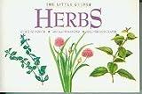 Herbs, , 1875137769