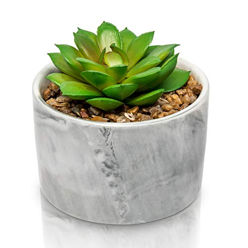 Porcelain Glossy Marble Vase + The Fake Potted Plants Stunningly Realistic Vibe┃Pre-Filled Fake Succulent Plants in Pot┃Fake Desk Plant is Perfect for Sprucing Up The Bathroom (Pots Price Plant Best)