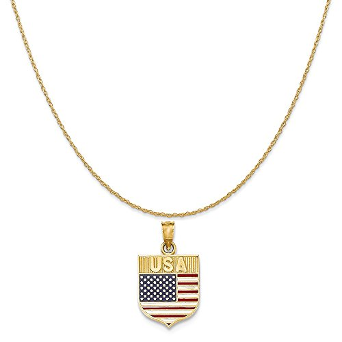 14k Yellow Gold American Flag (14k Yellow Gold Usa Flag Enameled Pendant on a 14K Yellow Gold Rope Chain Necklace, 18