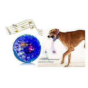 Sheraton Luxuries 3 Led Dog Balls Toys