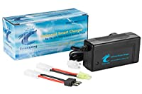 OceanLoong 2-Amp Smart Fast Charger for 6V-12V NiMH/NiCd RC Car Battery Pack with Standard Tamiya Connector and Traxxas adapter connector