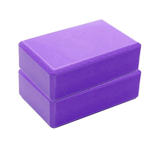 Price comparison product image Aurorax Yoga Foam Blocks, High Density EVA Foam Yoga Accessories Support Improve Strength and Deepen Poses - Great for Yoga, Fitness & Gym (Purple)