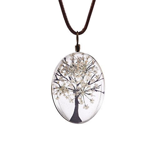 FM42 White Life of Tree Queen Anne's Lace Dried Flowers Oval Pendant Necklace FN4074