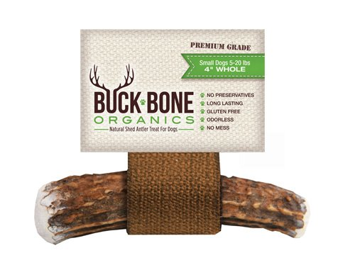 411NO1t8 NL - Buck Bone Organics Elk Antler Dog Chews by, All Natural Healthy Chew For Small Dogs, From Montana USA, SMALL SIZE