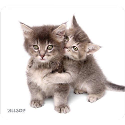 Allsop Naturesmart Mouse Pad, Kittens - Salisbury Shopping