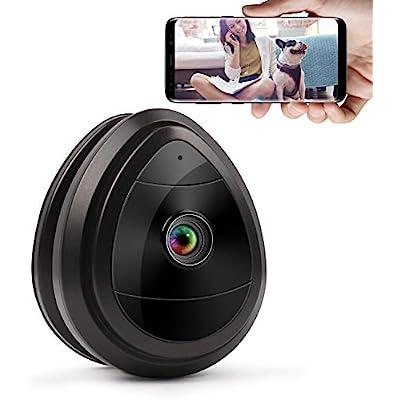 wireless-ip-home-surveillance-security-1