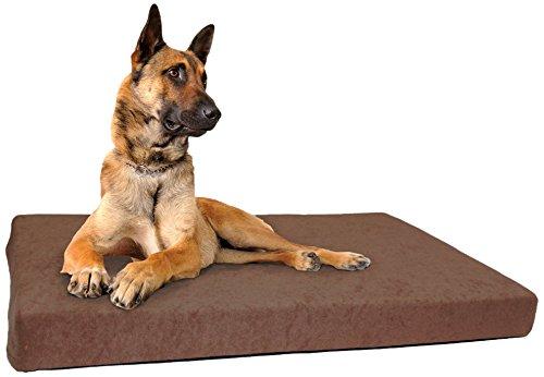 CANIS SOFT Hundekissen Test