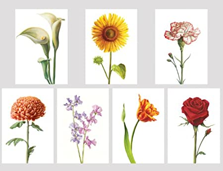 305808e1e6e5 Traditional Floral collection x 7 - Beautiful selection of Seven Blank  Greeting Cards. Flowers  Amazon.co.uk  Kitchen   Home