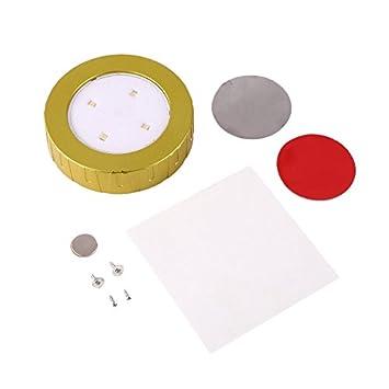 LED de alto brillo con batería Puck Light con Easy Magnetófono instalado (Color: dorado): Amazon.es: Coche y moto