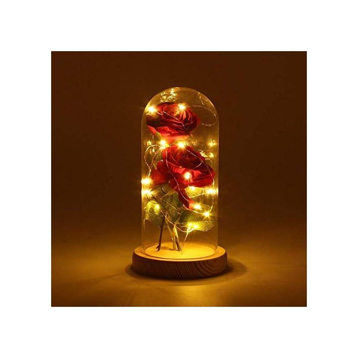 """411NuggI55L ♥ """"KIT DE ROSA ROJA """"BEAUTY AND THE BEAST"""": Incluye 2 piezas de Red Silk Rose, 20 Leds Strip Light con A Glass Dome y A Wooden Base, crea un ambiente romántico para los amantes. ♥ROSA BRILLANTE EN BÓVEDA DE CRISTAL: Altura 18cm, Diámetro 8.5cm. Espesor de vidrio de 0.23cm. Con el paquete confiable. Por favor, tenga la seguridad de comprar. También puede cortar y doblar la longitud de la rosa según su necesidad. E insértelo en el pequeño orificio de la base de madera. ♥ROSA DE SEDA ARTIFICIAL: La cadena de 20 LED tiene una longitud de aproximadamente 2m / 6.6ft, está hecha con un fino alambre de cobre flexible que crea la forma que desee y agrega un hermoso acento decorativo. Hecho de alambre de cobre alto, flexible, IP20 a prueba de agua, duradero para uso diario."""