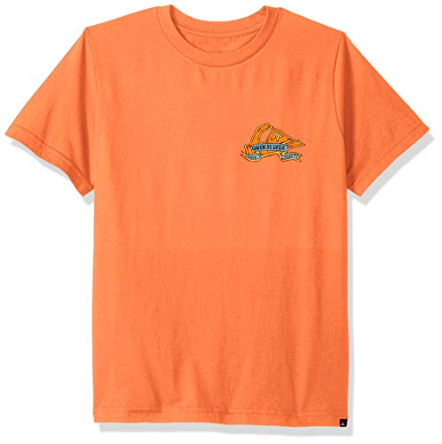 (Quiksilver Boys' Big Tattered TEE, Flamingo S/10)