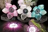 Sicce Flower Pink LED Floating Pond Light - Single with BONUS Max Ponds Magnet Calendar SIC673
