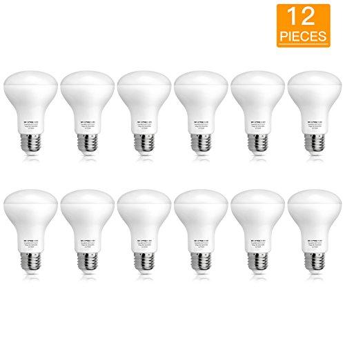 Indoor Flood Light Bulb Sizes in US - 5