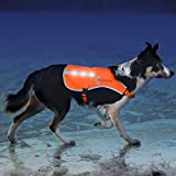 Cheap Illumiseen LED Dog Vest | Orange Safety Jacket with Reflective Strips & USB Rechargeable LED Lights | Increase Dog's Visibility When Walking, Running, Training Outdoors (Medium, Orange)