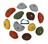 12 Large Simple Jugs | Bolt-on Rock Climbing Holds | Earth Tones