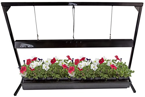 Apollo-Horticulture-Purple-Reign-4-Foot-54W-6400K-T5-Grow-Light-System-for-Plan-Growing-Choose-Your-Bulbs