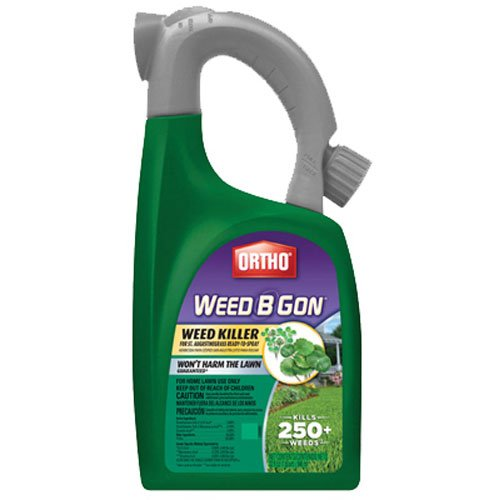 Ortho RTS Weed B Gon Weed Killer for St. Augustinegrass 32 oz (Sold in select Southern states) (Weed B-gon Ortho)