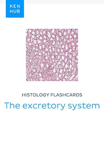 Histology flashcards: The excretory system: Learn all organs and tissues on the go (Kenhub Flashcards Book 59) - Excretory Systems