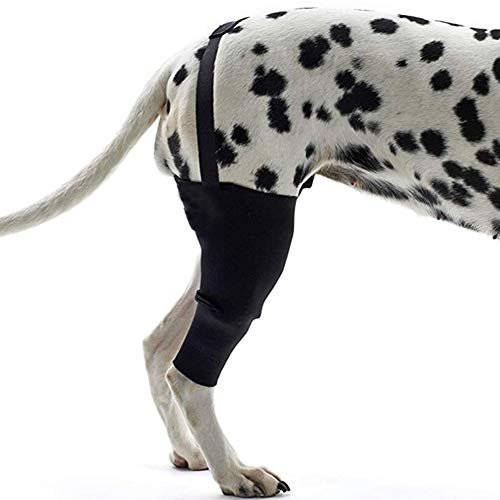 PLAFUETO Dog Knee Support Sleeve Dog Leg Brace Rear Dog Hock Support Heals Hock Joint Wrap Sleeve...