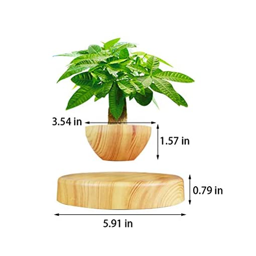 Creative Magnetic Levitating Air Bonsai Pot