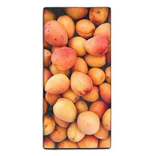 Apricots Fruit Ripe Harvest Fiber Reactive Printed Kitchen Dish Towel 27.5 X 11.8 Inches
