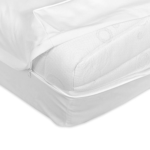 Zippered Plastic Mattress Cover - 6