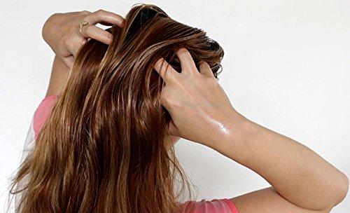 Brahmi Hair Oil (8 oz) by Vadik Herbs | All natural herbal hair oil for hair growth, hair conditioning, dandruff and dry scalp | Herbal scalp treatment by Vadik Herbs (Image #5)