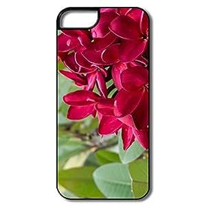 Custom Red Plumeria Flowers Keep Calm IPhone 5 5s Skin For Him