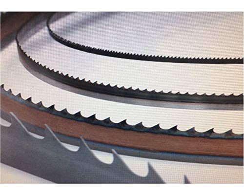 Timber Wolf Band Saw Blades, 3/16 Inches Wide, Superior Woodworking Band Saw Blades - W 3/16 | L 115 | TPI 10 | TS TPI