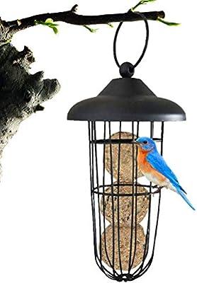 sdgfd Comedero para pájaros para Colgar pájaros Silvestres ...