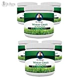 Dr. Berg's Wheat Grass Juice Powder - Raw & Ultra-Concentrated Nutrients - Rich in Vitamins, Chlorophyll & Trace Minerals - 60 Servings - Gluten Free - Non-GMO - 5.3 oz (6 Pack)